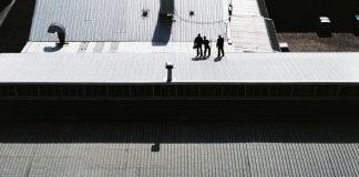 זיפות גגות – למה זה חשוב?
