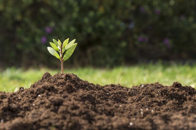 סקר גז קרקע – למה צריך את זה?